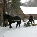 Litauischer Schneepflug