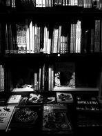 Literarisches in Sachen Backsünden