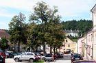 Litschau im Waldviertel (nach dem Pfarrfrühschoppen)