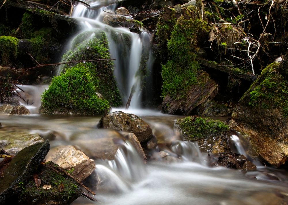 little creek ...