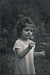 Little fairy of dandelions