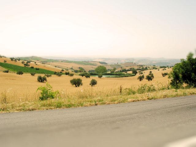 Little Italy...