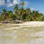 Little Paradise of Maldives