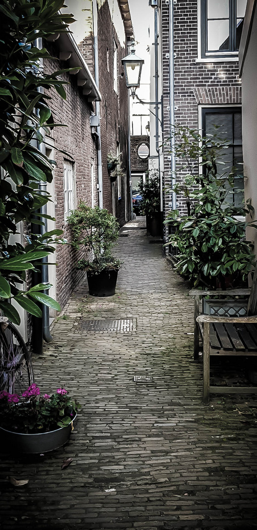 little street in the Netherlands