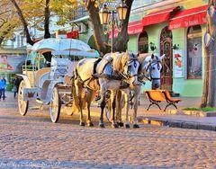 Little Vienna in Ukraine