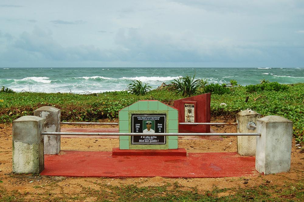 living on the beach/tsunami 2 / 2009