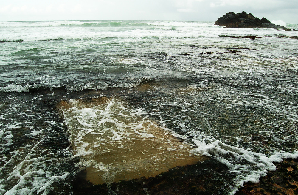 living on the beach/tsunami4 / 2009