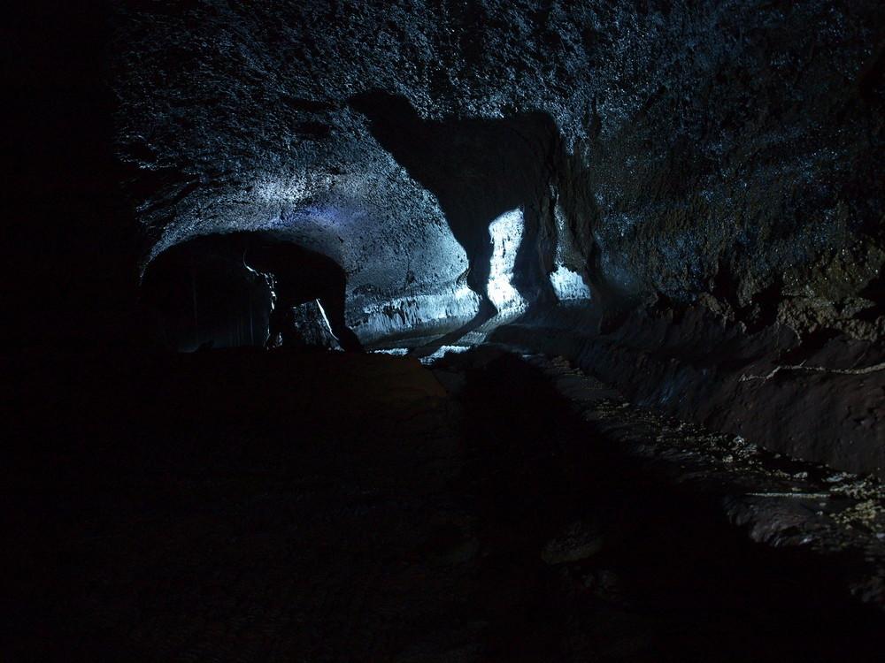 llama in a cave...?!
