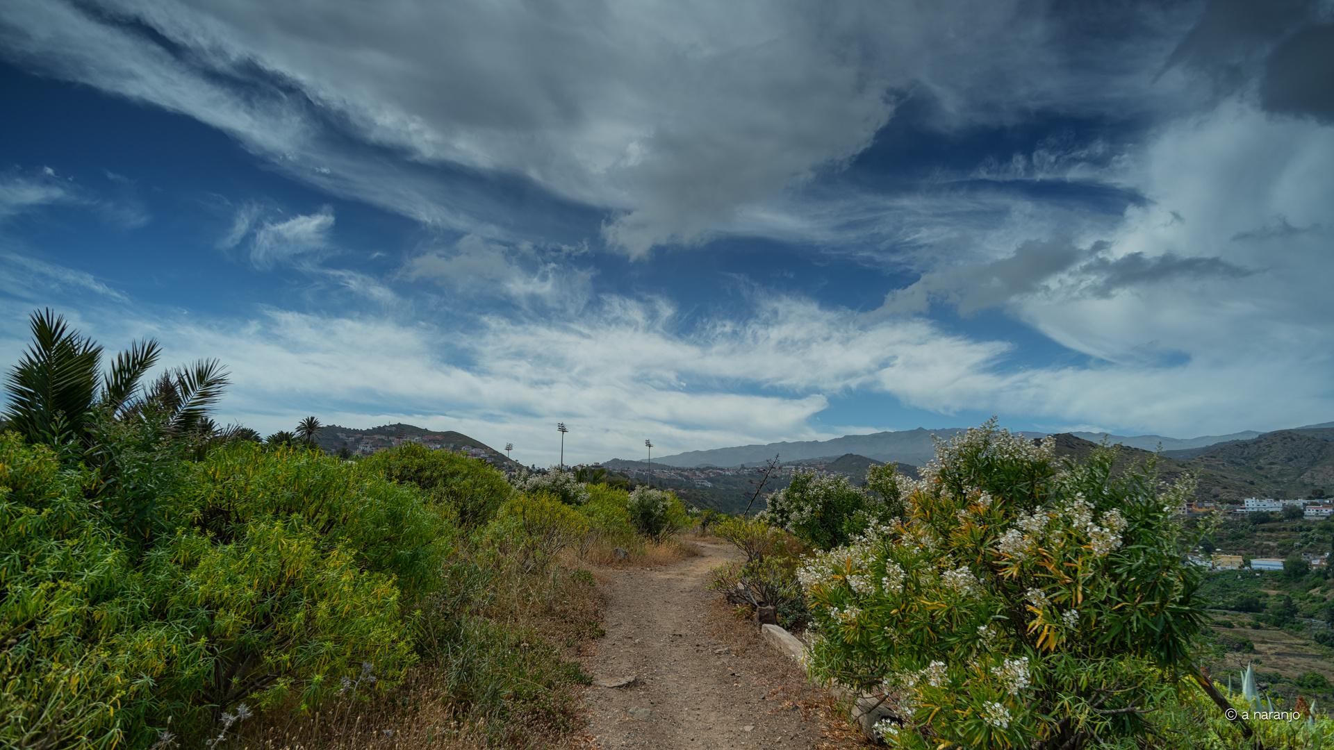 Llego la primavera Guiniguada Gran Canaria