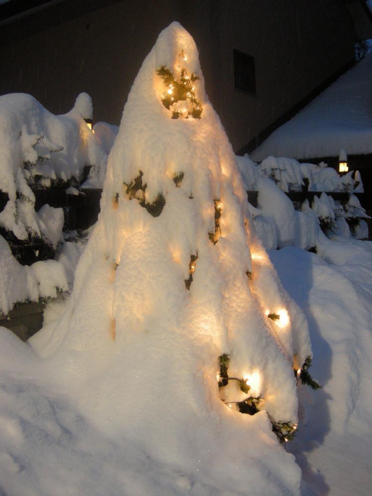 Lo spirito dell'albero di Natale!