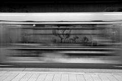 Lo zoo in metropolitana.....