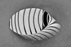 L'occhio bianco