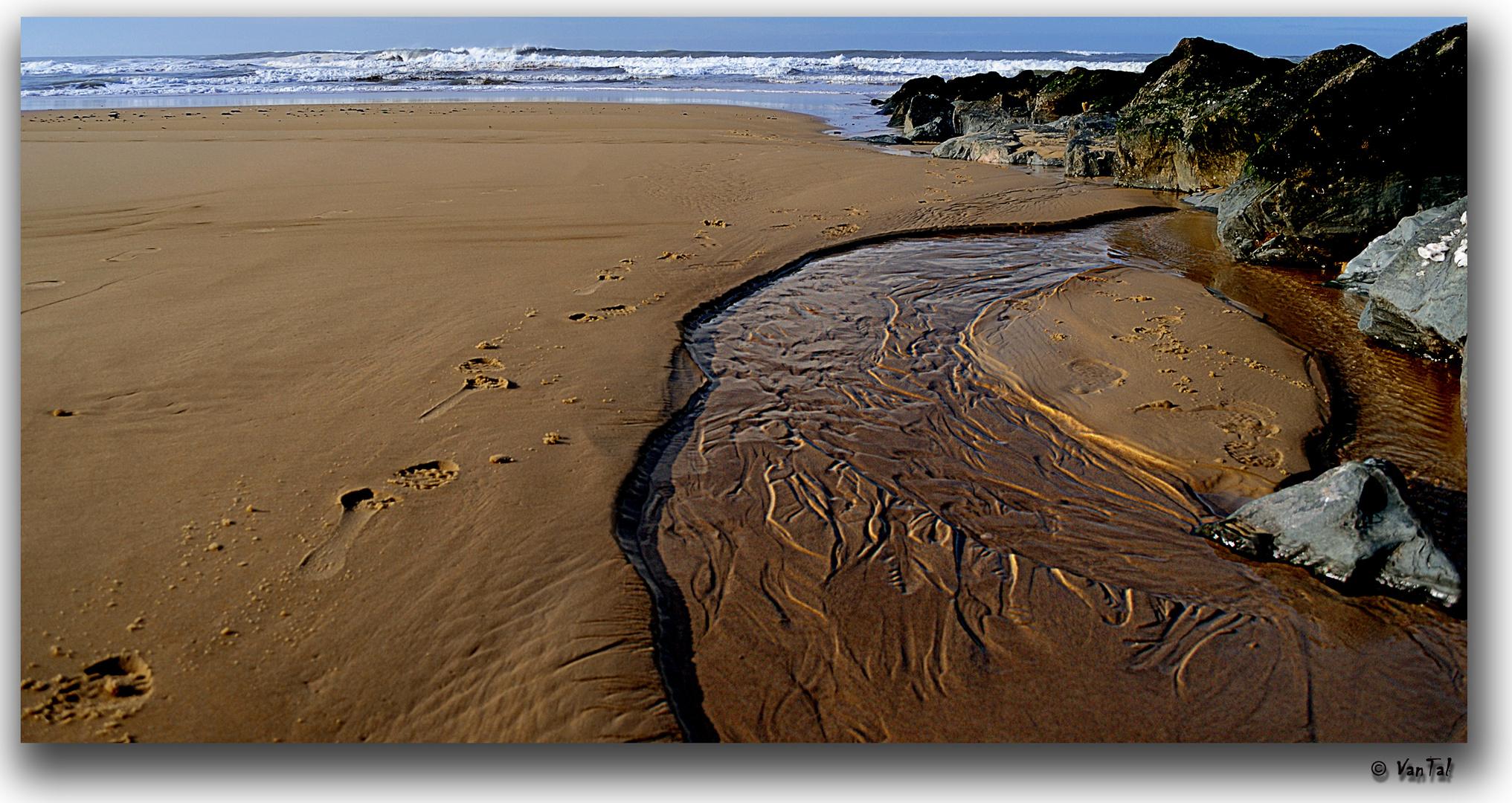 L'Océan est l'enfant du ruisseau. [ Alex Le Gall ]