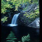 Loch Arkaid