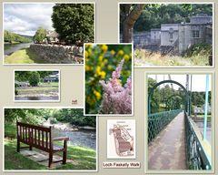 Loch Faskally Walk