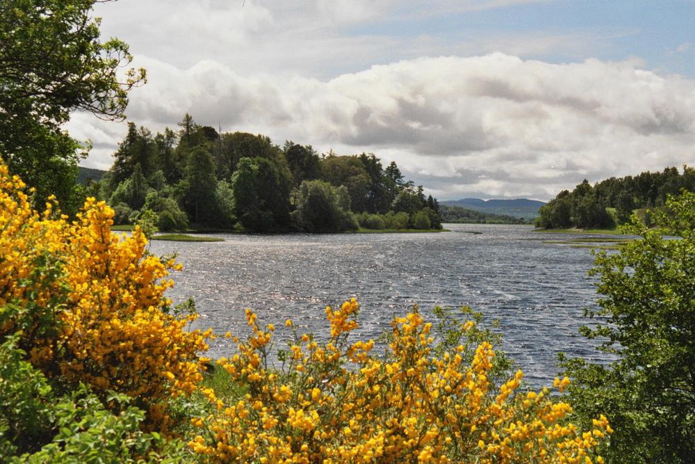 Loch Insh - the...