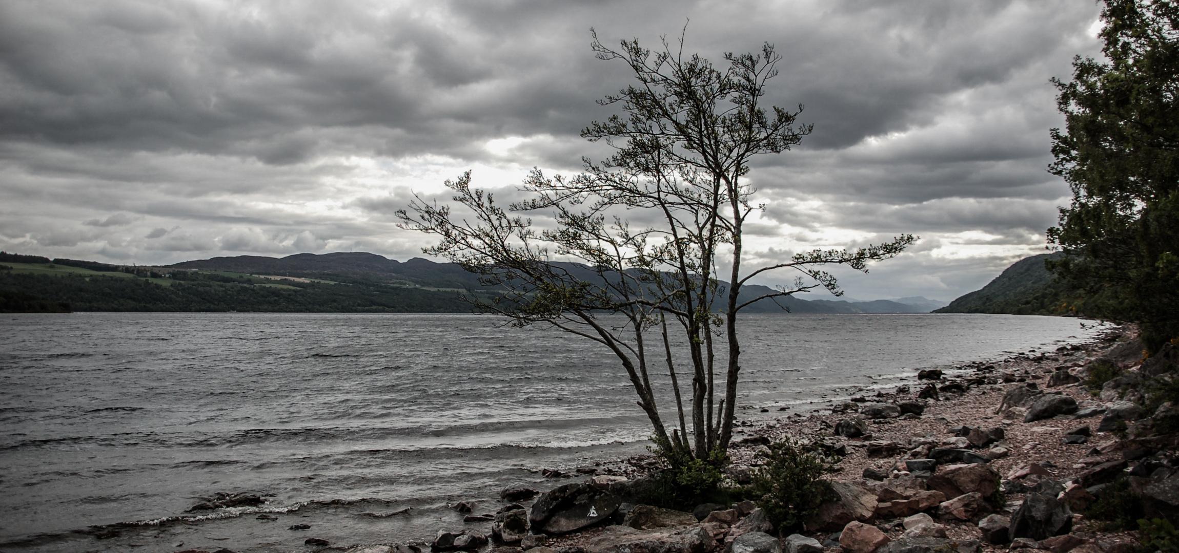 Loch Ness Superstar