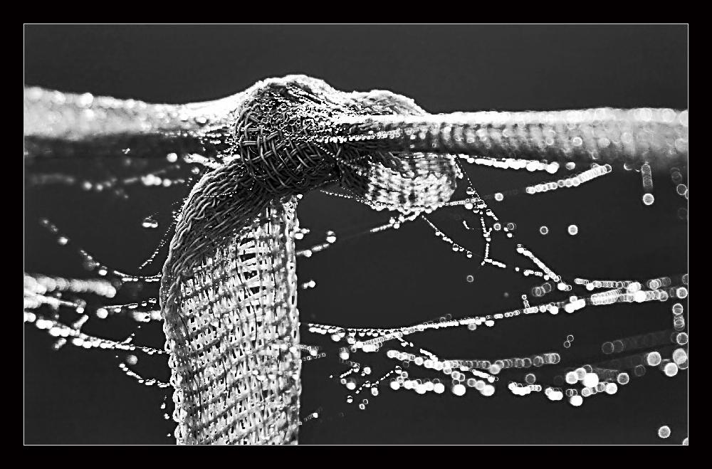 löse den Knoten...