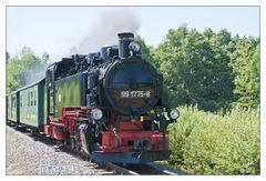 Lößnitzgrundbahn in voller Fahrt