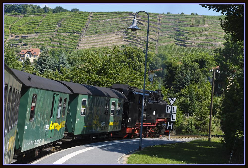Lößnitzgrundbahn vor den Weinbergen...