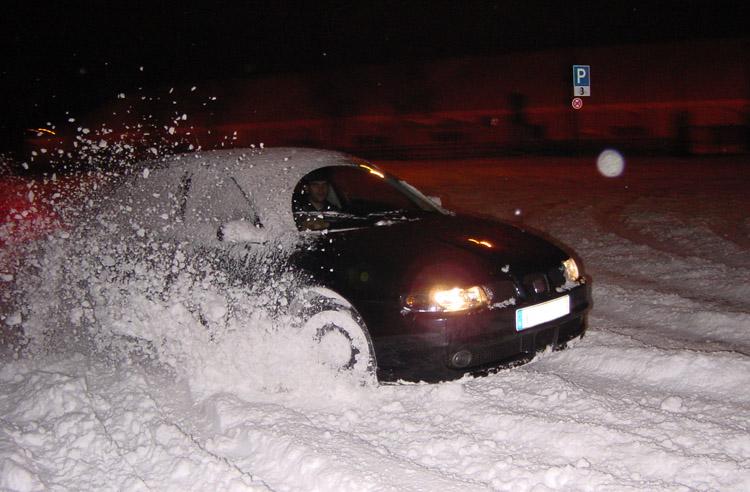 Löwe im Schnee 2