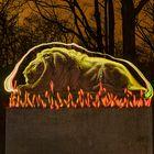 Löwe in Flammen