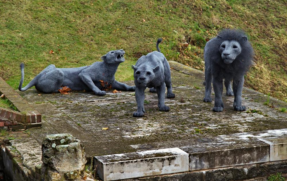 Löwen am Tower of London