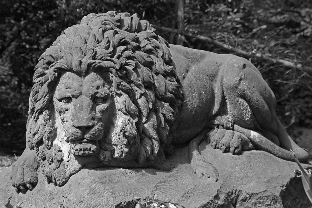 Löwen-Stark...
