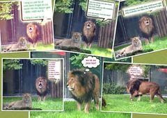 Löwengesang