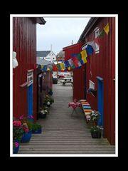 Lofoten-Austvågøy 046