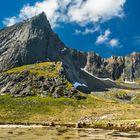 Lofotenfjord