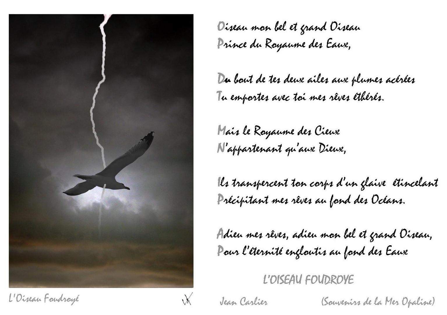 Loiseau Foudroye Poeme Photo Et Image Graphisme 2d 13 05