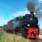 Lok Schwarzach bei der Selfkantbahn