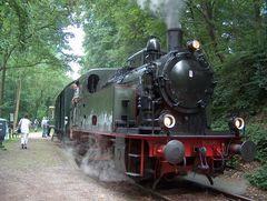 Lok VIII am Endpunkt am Haus Scheppen (Essen/Baldeneysee)