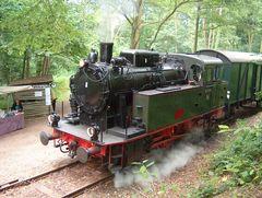 Lok VIII der hespertalbahn a m Haltepunkt Haus Scheppen.