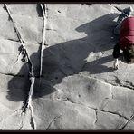 """L'ombra del """"gigante"""""""
