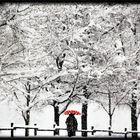 l'ombrello.......