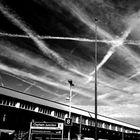 London Crisscross