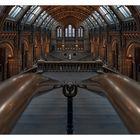 LondonNo.XXXIV - Symmetrie