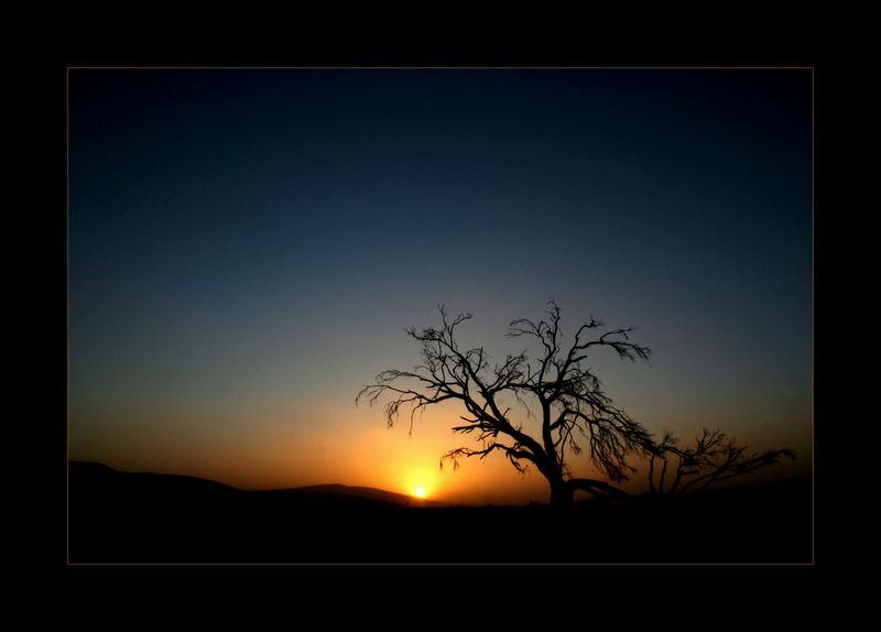 Lonely Sunset I