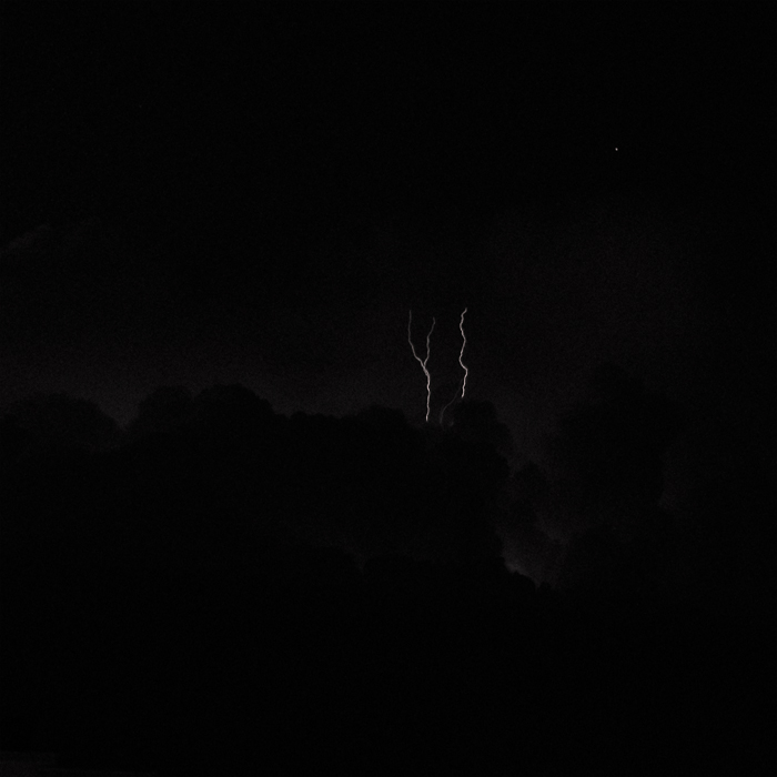 Lonely Trees In The Night