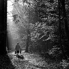Lonely Walk II