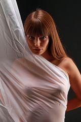 LOOK Behind Curtain Be-90color undSW +2Fotos