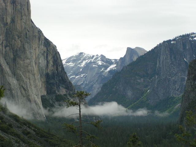 Look into the Yosemite Valley