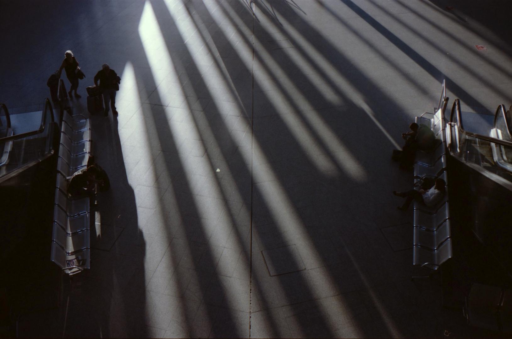Loong Shadows
