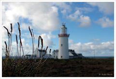 [ Loop Head Lighthouse II ]