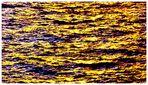L'or marin