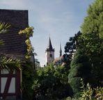 ~ Lorch am Rhein ~