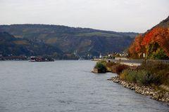 Lorch am Rhein, Blick auf den Rhein nach Westen