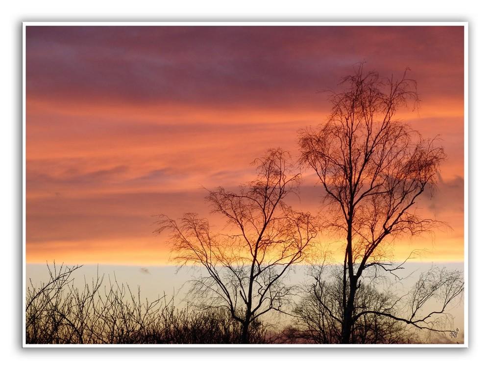 lorsque les couleurs envahissent le ciel....